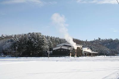 雪中梅 田んぼの風景